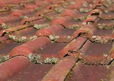 Op hellende daken